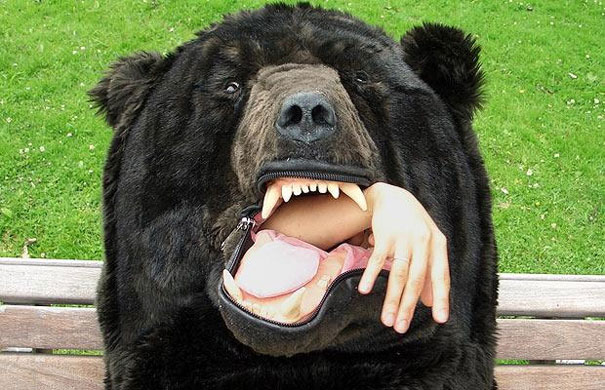 7 если в сновидении медведь нападает, кусает.